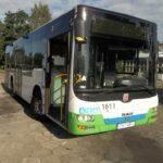Autobus MAN, LIONS CITY